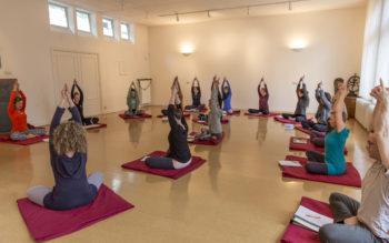 yoga-basisjaar